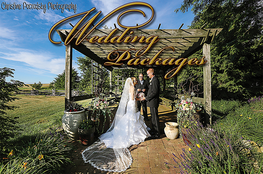 Wedding Packages, image of bride and groom getting married under the pergola.