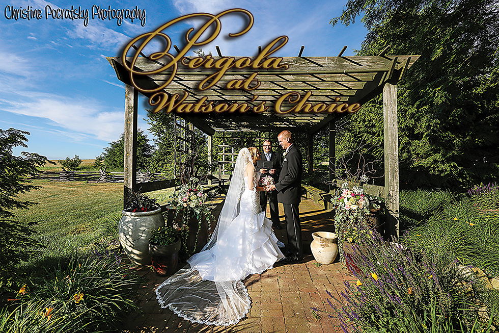 Photo of Wedding in the Pergola at Watsons Choice