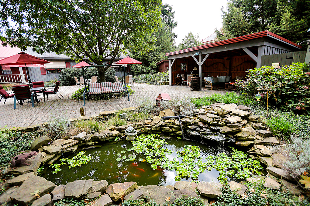 Koi pond and garden In patio at Watsons choice..