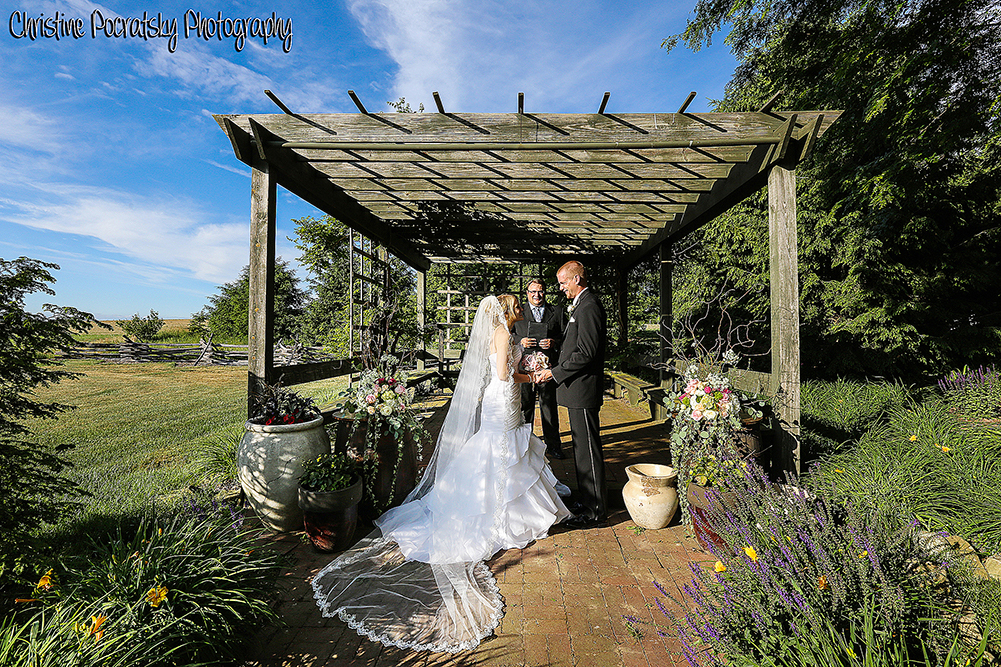 Bride Groom vows in Pergola.