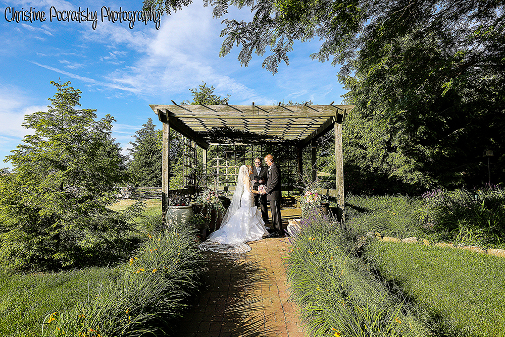 Pergola wedding from a distance.