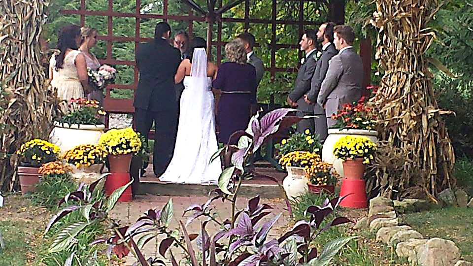 Wedding using the pergola at Watsons Choice.