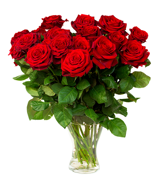Dozen roses in room at Watsons Choice.