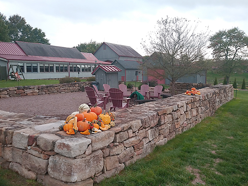 Fire pit Watsons choice with pumpkins on the wall.